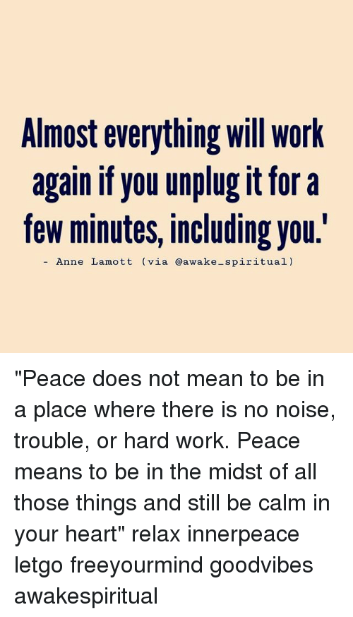 "Memes, Work, and Heart: Almost everything will work  again if you unplug it for a  few minutes, including you.'  Anne Lamott (via @awake-spiritual) ""Peace does not mean to be in a place where there is no noise, trouble, or hard work. Peace means to be in the midst of all those things and still be calm in your heart"" relax innerpeace letgo freeyourmind goodvibes awakespiritual"