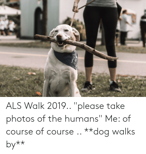 """als: ALS Walk 2019.. """"please take photos of the humans"""" Me: of course of course .. **dog walks by**"""