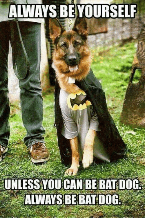 Always Be Yourself Unless You Can Be Bat Dog Always Be Bat Dog