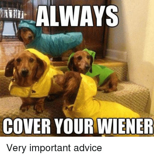 wieners: ALWAYS  COVER YOUR WIENER Very important advice
