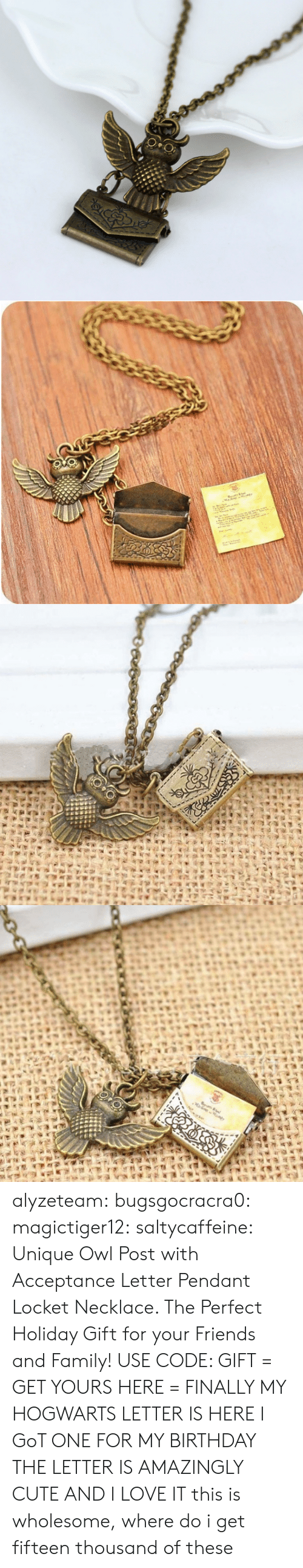 Birthday, Cute, and Family: alyzeteam: bugsgocracra0:  magictiger12:   saltycaffeine:  Unique Owl Post with Acceptance Letter Pendant Locket Necklace. The Perfect Holiday Gift for your Friends and Family! USE CODE: GIFT = GET YOURS HERE =   FINALLY MY HOGWARTS LETTER IS HERE   I GoT ONE FOR MY BIRTHDAY THE LETTER IS AMAZINGLY CUTE AND I LOVE IT  this is wholesome, where do i get fifteen thousand of these