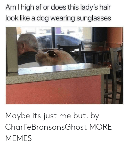 High AF: Am I high af or does this lady's hair  look like a dog wearing sunglasses  2 Maybe its just me but. by CharlieBronsonsGhost MORE MEMES