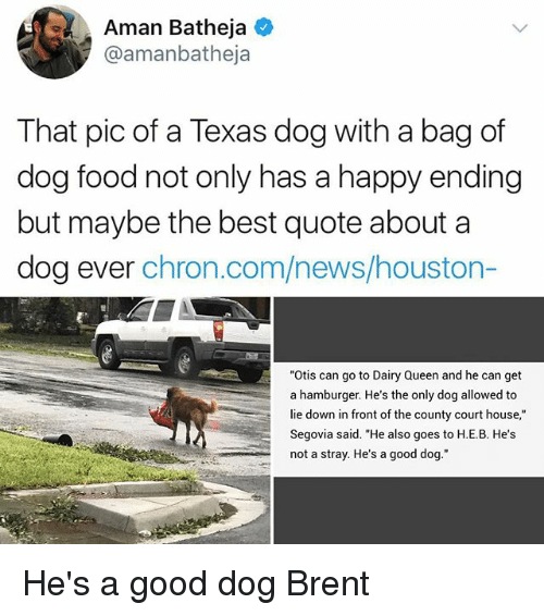 """Food, Memes, and News: Aman Batheja  @amanbatheja  That pic of a Texas dog with a bag of  dog food not only has a happy ending  but maybe the best quote about a  dog ever chron.com/news/houston-  """"Otis can go to Dairy Queen and he can get  a hamburger. He's the only dog allowed to  lie down in front of the county court house,""""  Segovia said. """"He also goes to H.E.B. He's  not a stray. He's a good dog."""" He's a good dog Brent"""