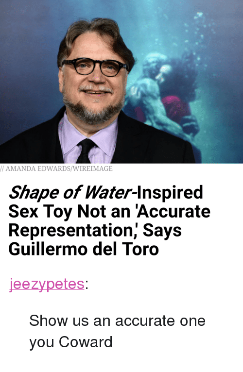 """Guillermo Del Toro: AMANDA EDWARDS/WIREIMAGE  Shape of Water-lnspired  Sex Toy Not an 'Accurate  Representation, Says  Guillermo del Toro <p><a href=""""http://jeezypetes.tumblr.com/post/170963596278/show-us-an-accurate-one-you-coward"""" class=""""tumblr_blog"""">jeezypetes</a>:</p>  <blockquote><p>Show us an accurate one you Coward</p></blockquote>"""