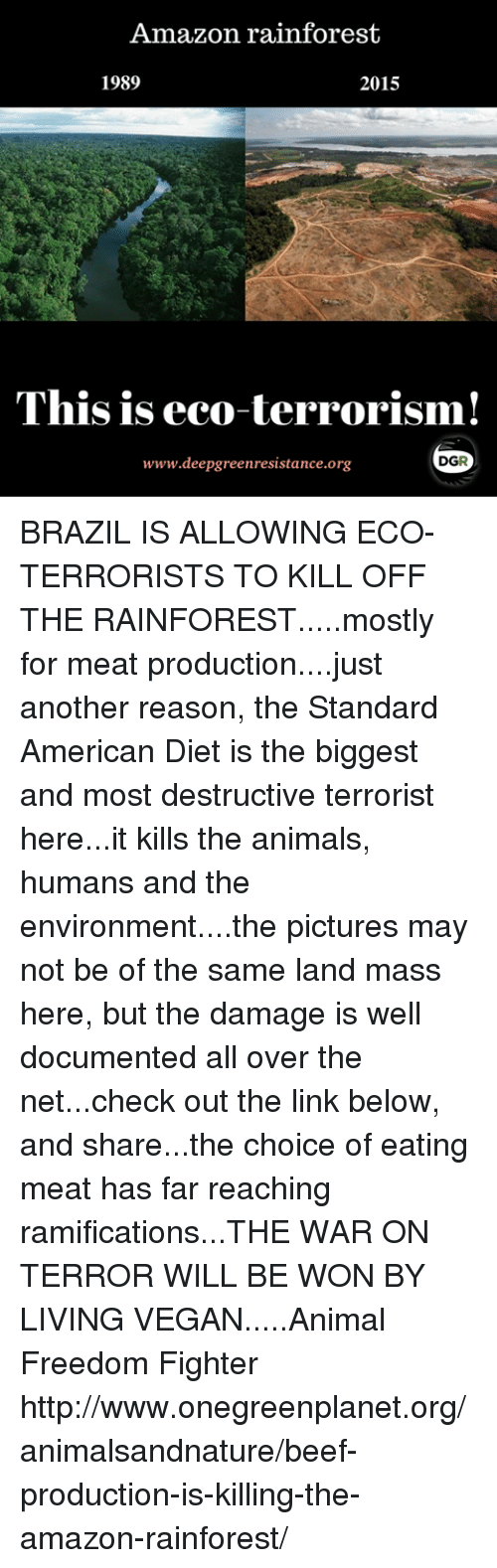 an introduction to the reasons for the destruction of the rainforest Viii introduction of exotic poaching and destruction of habitat are the reasons for this species great article about endangered animals in the rainforest.