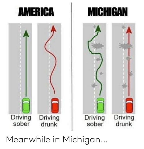 Driving: AMERICA  MICHIGAN  Driving Driving  Driving Driving  sober  drunk  sober  drunk Meanwhile in Michigan…