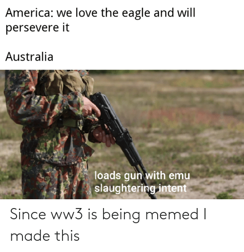 the eagle: America: we love the eagle and will  persevere it  Australia  loads gun with emu  slaughtering intent Since ww3 is being memed I made this