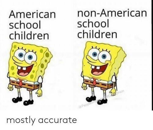 Children, Reddit, and School: American  school  children  non-American  school  children  @PeopleshepebDllonion mostly accurate