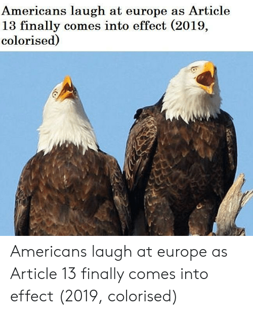 Europe, Article, and Americans: Americans laugh at europe as Article  13 finally comes into effect (2019,  colorised) Americans laugh at europe as Article 13 finally comes into effect (2019, colorised)