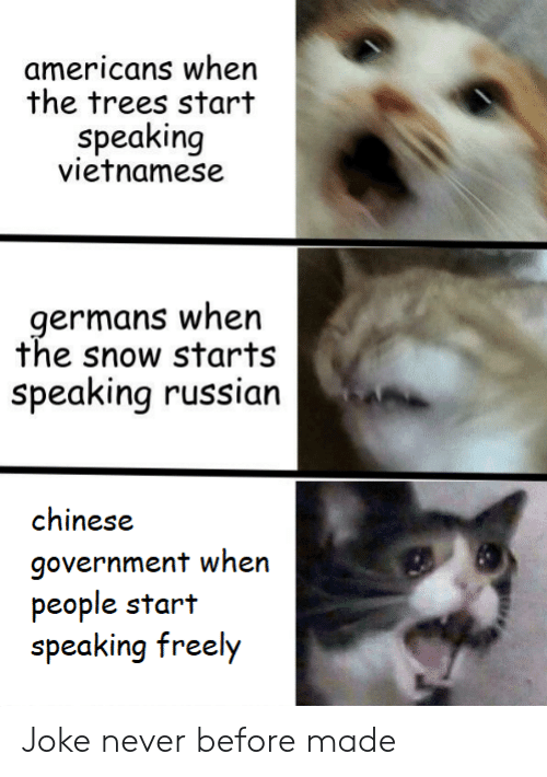 Chinese, Snow, and Trees: americans when  the trees start  speaking  vietnamese  germans when  the snow starts  Speaking russian  chinese  government when  people start  speaking freely Joke never before made