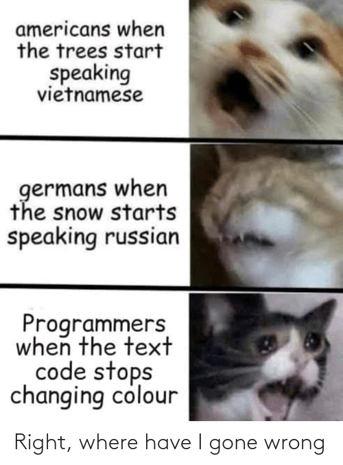 Text: americans when  the trees start  speaking  vietnamese  germans when  the snow starts  speaking russian  Programmers  when the text  code stops  changing colour Right, where have I gone wrong