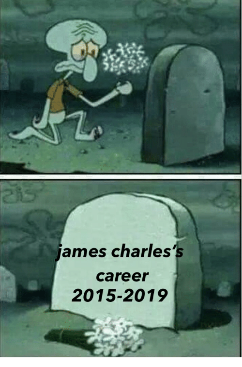 Career, Ames, and 2019: ames charles's  career  2015-2019