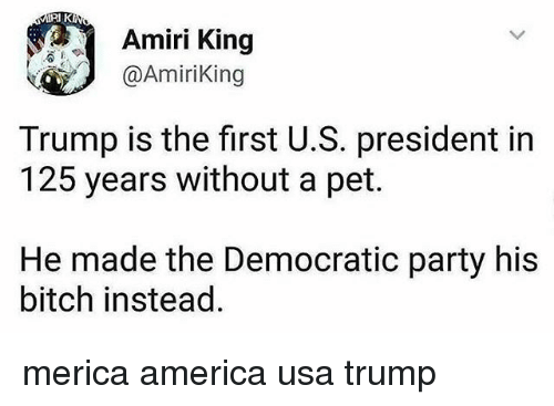 u-s-president: Amiri King  @AmiriKing  Trump is the first U.S. president in  125 years without a pet.  He made the Democratic party his  bitch instead merica america usa trump