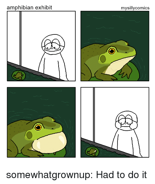 Exhibit: amphibian exhibit  mysillycomics somewhatgrownup:  Had to do it