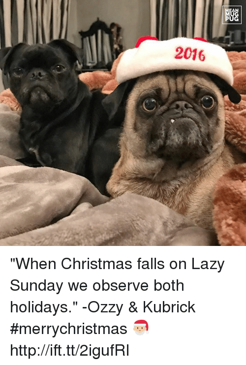 """Ozzies: AN  2016  NGG  阳 """"When Christmas falls on Lazy Sunday we observe both holidays."""" -Ozzy & Kubrick #merrychristmas 🎅🏼 http://ift.tt/2igufRI"""