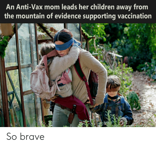 evidence: An Anti-Vax mom leads her children away from  the mountain of evidence supporting vaccination  titanmaximum2 So brave