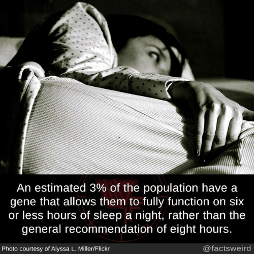 alyssa: An estimated 3% of the population have a  gene that allows them to fully function on six  or less hours of sleep a night, rather than the  general recommendation of eight hours.  Photo courtesy of Alyssa L. Miller/Flickr  @factsweird