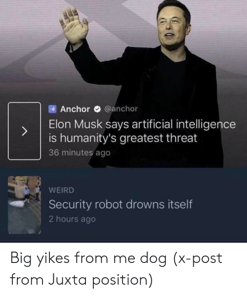 yikes: Anchor @anchor  Elon Musk says artificial intelligence  is humanity's greatest threat  36 minutes ago  WEIRD  Security robot drowns itself  2 hours ago Big yikes from me dog (x-post from Juxta position)