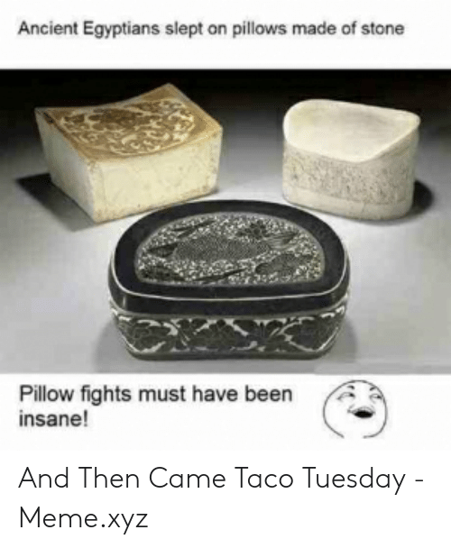 Taco Tuesday Meme: Ancient Egyptians slept on pillows made of stone  Pillow fights must have been  insane! And Then Came Taco Tuesday - Meme.xyz