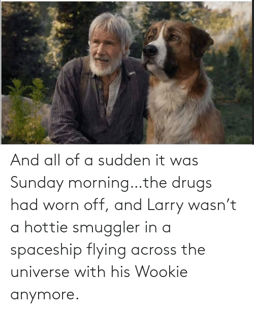 T A: And all of a sudden it was Sunday morning…the drugs had worn off, and Larry wasn't a hottie smuggler in a spaceship flying across the universe with his Wookie anymore.