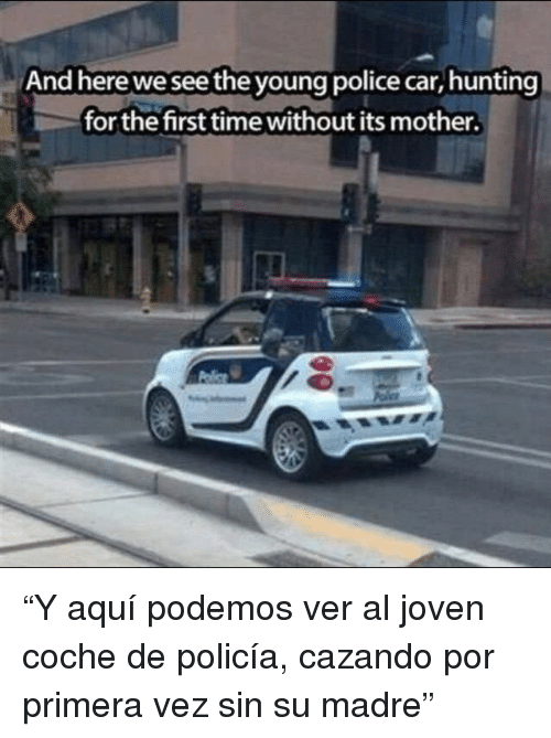 "Police, Hunting, and Time: And here we see the young police car, hunting  for the first time without its mother. ""Y aquí podemos ver al joven coche de policía, cazando por primera vez sin su madre"""