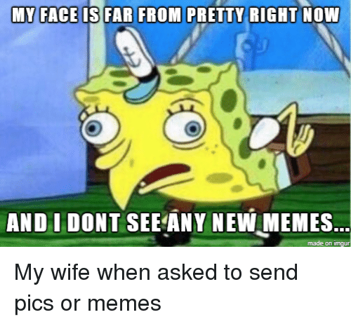 Any New: AND I DONT SEE ANY NEW MEMES  made on imgu My wife when asked to send pics or memes