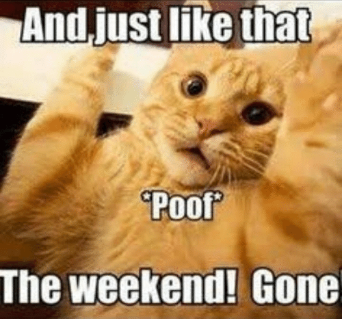 Memes, The Weekend, and 🤖: And just like that  Poo  The weekend! Gone