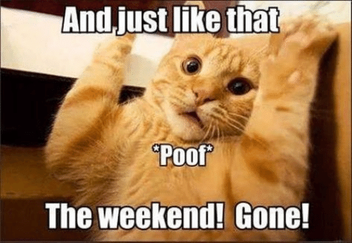 Memes, The Weekend, and 🤖: And.just like that  Poof  The weekend! Gone!