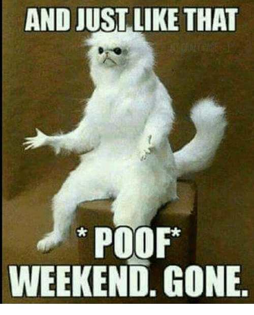 Poofes: AND JUST. LIKE THAT  POOF*  WEEKEND. GONE