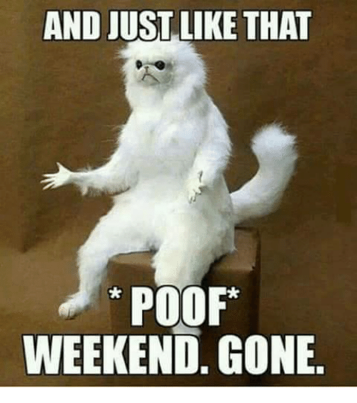 Poofes: AND JUST LIKE THAT  POOF  WEEKEND, GONE