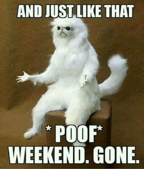 Memes, 🤖, and Weekend: AND JUST LIKE THAT  POOF*  WEEKEND, GONE