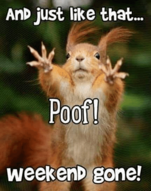 Weekend Gone: AnD just like that...  Poof!  weekenD gone!