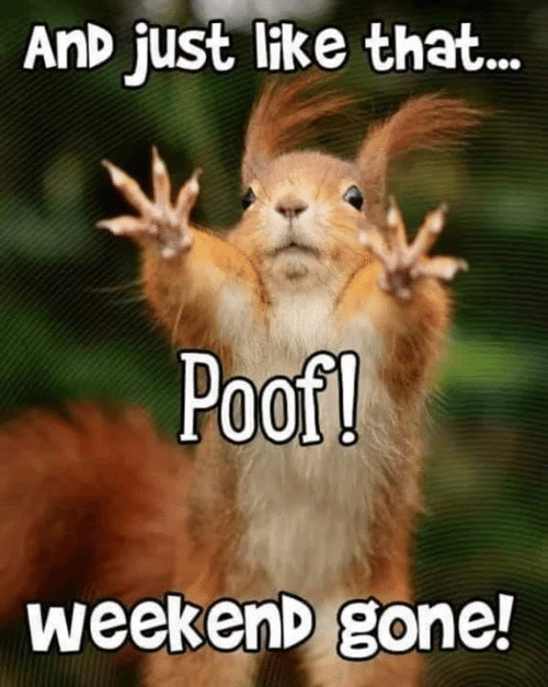 Weekend Gone: AnD just like that...  Poof  weekenD gone!