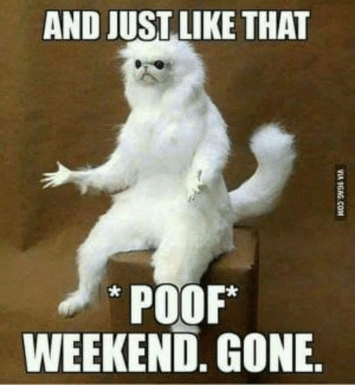 Weekend, Gone, and Like: AND JUST LIKE THAT  POOF  WEEKEND. GONE.