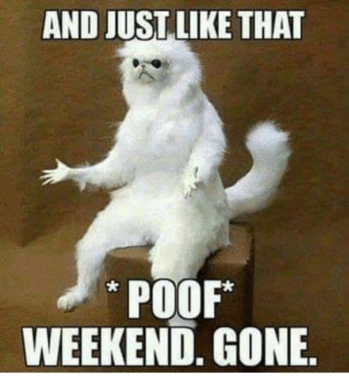 Memes, 🤖, and Weekend: AND JUST LIKE THAT  POOF  WEEKEND. GONE