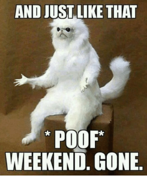 Weekend Gone: AND JUST LIKE THAT  POOF  WEEKEND. GONE