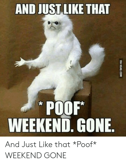 Funny, Weekend, and Gone: AND JUST LIKE THAT  POOF*  WEEKEND. GONE And Just Like that *Poof* WEEKEND GONE