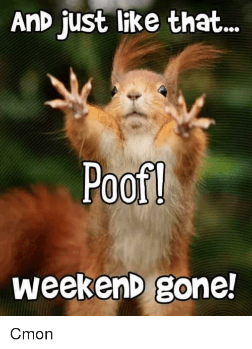 Weekend, Gone, and Like: AnD just like that  Poof  weekenD gone!