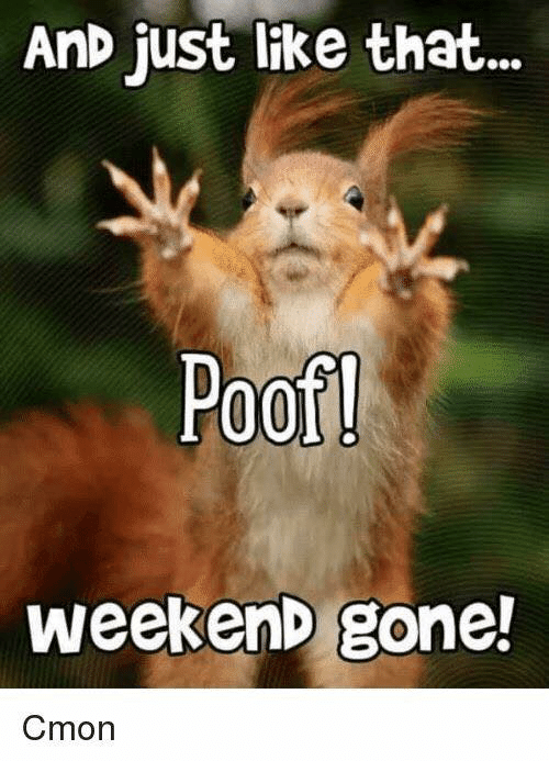 Memes, 🤖, and Weekend: AnD just like that...  Poof  weekenD gone!  Cmon