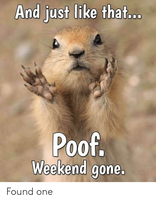 Terrible Facebook, Weekend, and Gone: And just like that...  Poof.  Weekend gone. Found one
