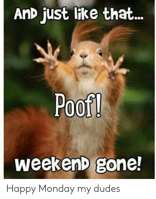 Happy, Monday, and Terrible Facebook: AnD just like that...  Poof!  weekenD gone! Happy Monday my dudes