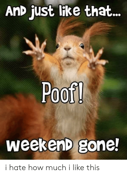 Terrible Facebook, How, and Weekend: AnD just like that...  Poof!  weekenD gone! i hate how much i like this