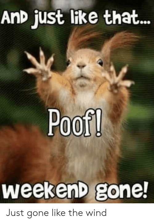 Reddit, Weekend, and Gone: AnD just like that...  Poof!  weekenD gone! Just gone like the wind