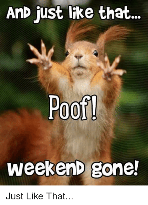 Reddit, Weekend, and Gone: AnD just like that  Poof  weekenD gone!