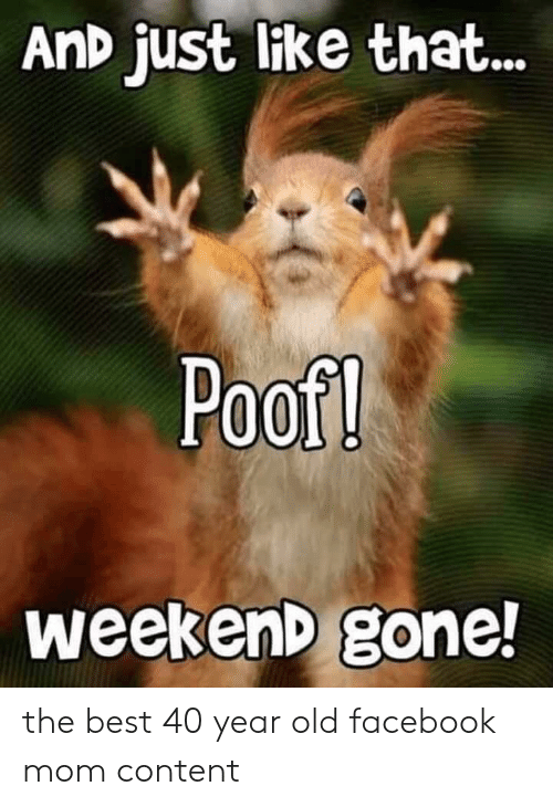 Facebook, Best, and Content: AnD just like that..  Poof!  weekenD gone! the best 40 year old facebook mom content