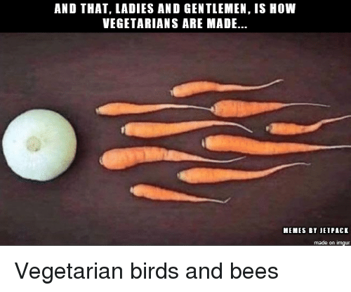 jetpack: AND THAT, LADIES AND GENTLEMEN, IS HOW  VEGETARIANS ARE MADE..  MEMES BY JETPACK  made on imgur Vegetarian birds and bees