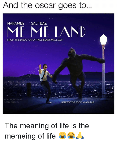 Who Meme: And the Oscar goes to...  HARAMBE  SALT BAE  ME ME LAND  FROM THE DIRECTOR OF PAUL BLART: MALL COP  memegourmet  Sean Speezy  HERE'S TO THE FOOLS WHO MEME. The meaning of life is the memeing of life 😂😂🙏