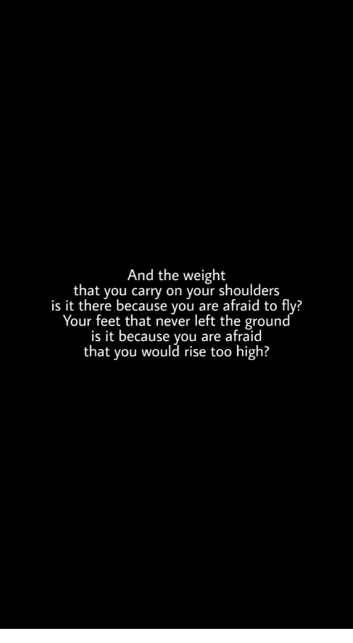 Never, Too High, and Feet: And the weight  that you carry on your shoulders  is it there because you are afraid to  fly?  Your feet that never left the ground  is it because vou are afraid  that you would rise too high?