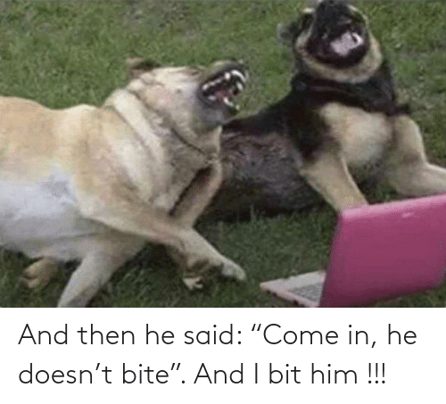 """bite: And then he said: """"Come in, he doesn't bite"""". And I bit him !!!"""
