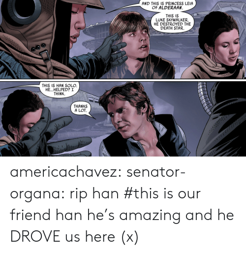Luke Skywalker: AND THIS IS PRINCESS LEIA  OF ALDERAAN  I1  THIS IS  LUKE SKYWALKER.  HE DESTROYED THE  DEATH STAR.  THIS IS HAN SOLO  HE...HELPED? I  THINK.  THANKS  A LOT americachavez: senator-organa: rip han #this is our friend han he's amazing and he DROVE us here(x)